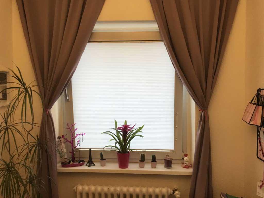 neues Fenster Fenster Krokos Berlin