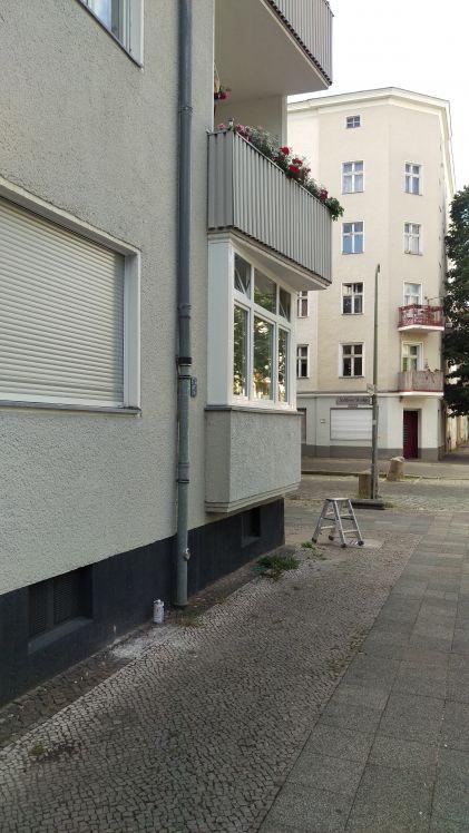 Fenster Berlin Fenster Krokos Berlin