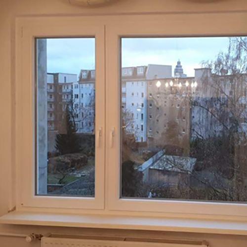 Wohnzimmerfenster Fenster Krokos Berlin