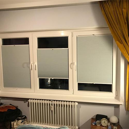 Fenster Krokos Fenster Krokos Berlin