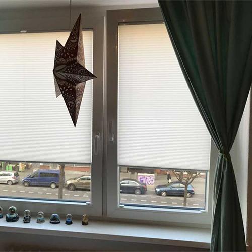 Kippfenster Fenster Krokos Berlin